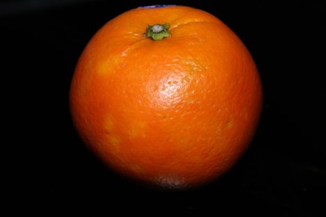 one-big-orange-fruit